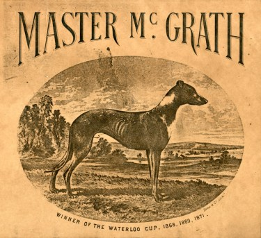 Master McGrath Flyer
